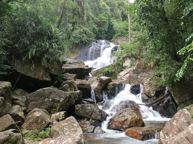 A waterfall in sinharaja