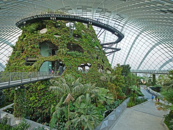 Gardens by the Bay Singapore | Image Credit: Allie Caulfield., Cloud Forest, Gardens by the Bay, Singapore - 20120617-05, CC BY 2.0