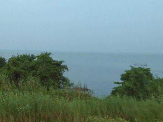 Muthurajawela | Image Credit: Николай Максимович, Negombo Lagoon (Muthurajawela marsh), Sri Lanka - panoramio, CC BY 3.0