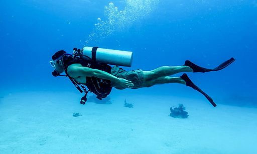 """Suba Diving  