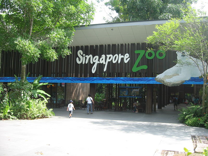 Singapore Zoo | Image Credit - No machine-readable author provided. Terence assumed (based on copyright claims), CC BY-SA 3.0 Via Wikimedia Commons